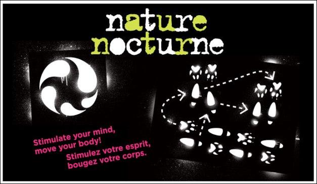 nocturne-fip